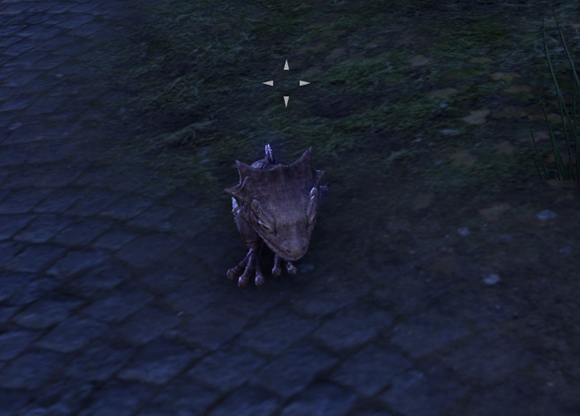 Teso pet dragon